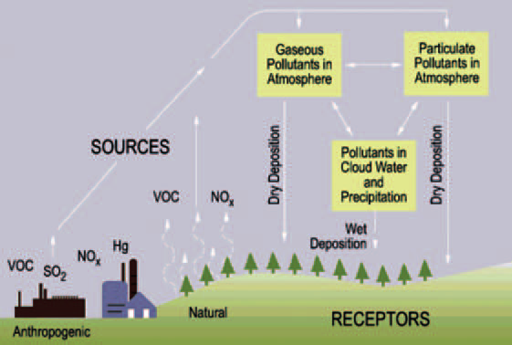 The acid rain cycle. The chemical precursors to acid rain.