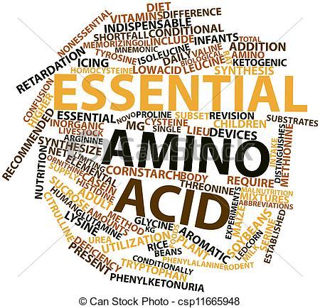 Protein Amino Acids Clip Art.