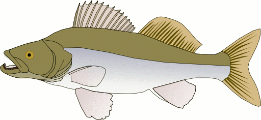 Free Green Fish Clipart, 1 page of Public Domain Clip Art.