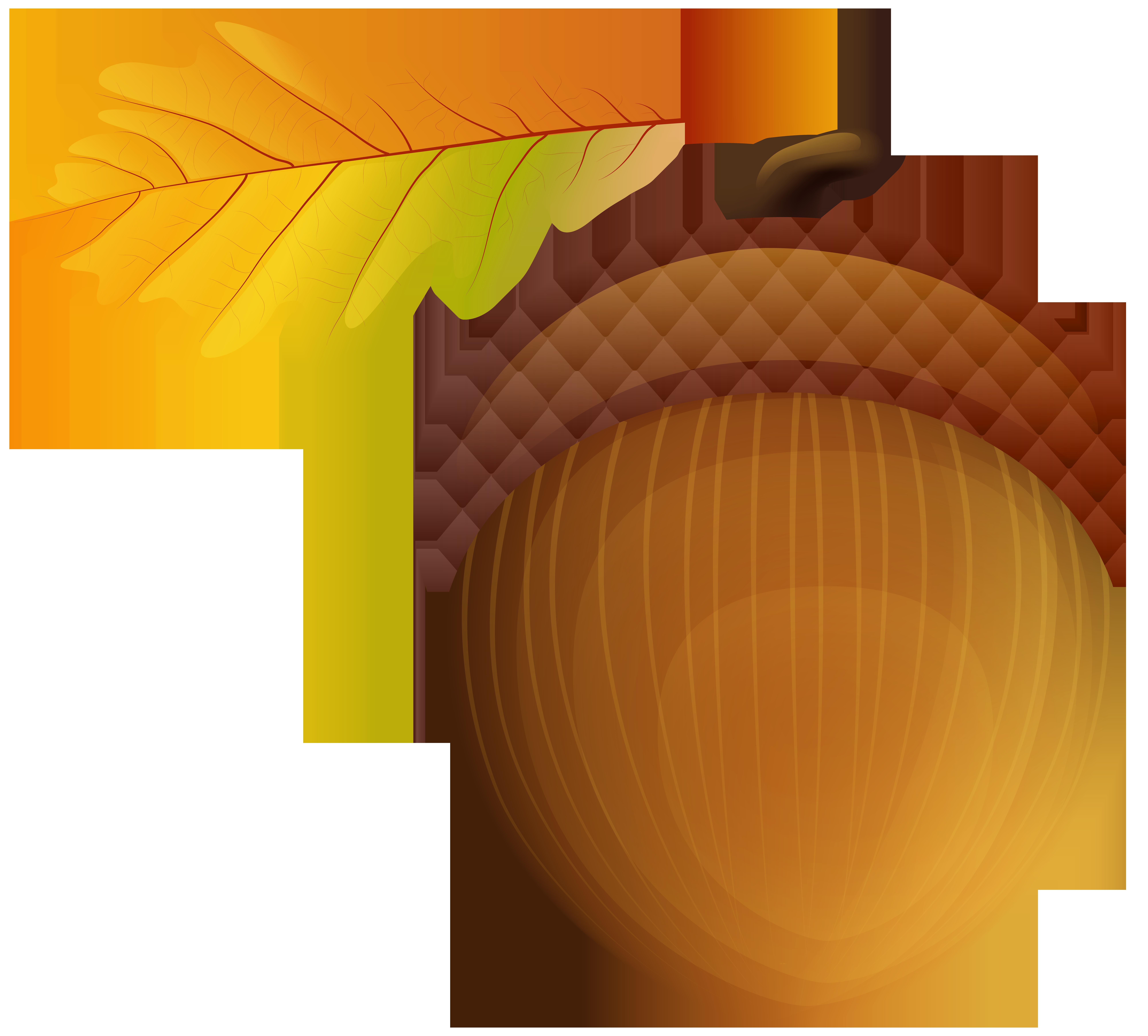 Acorn PNG Clip Art Image.