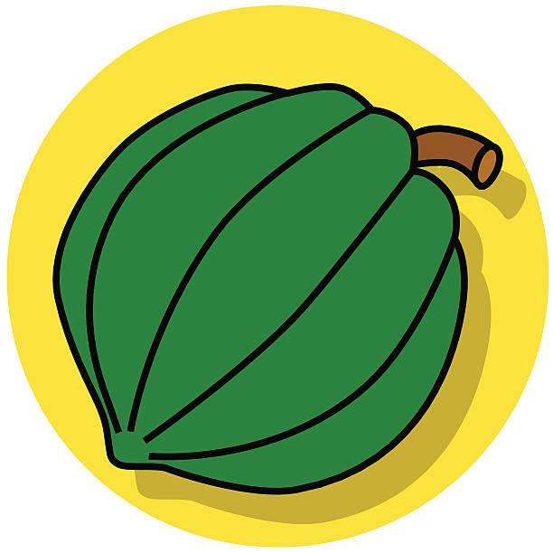 Acorn Squash Icon Illustrations, Royalty.