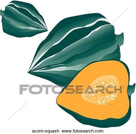 Acorn squash clipart 1 » Clipart Portal.