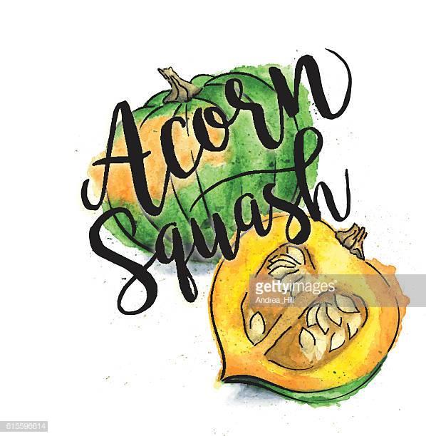 60 Top Acorn Squash Stock Illustrations, Clip art, Cartoons, & Icons.