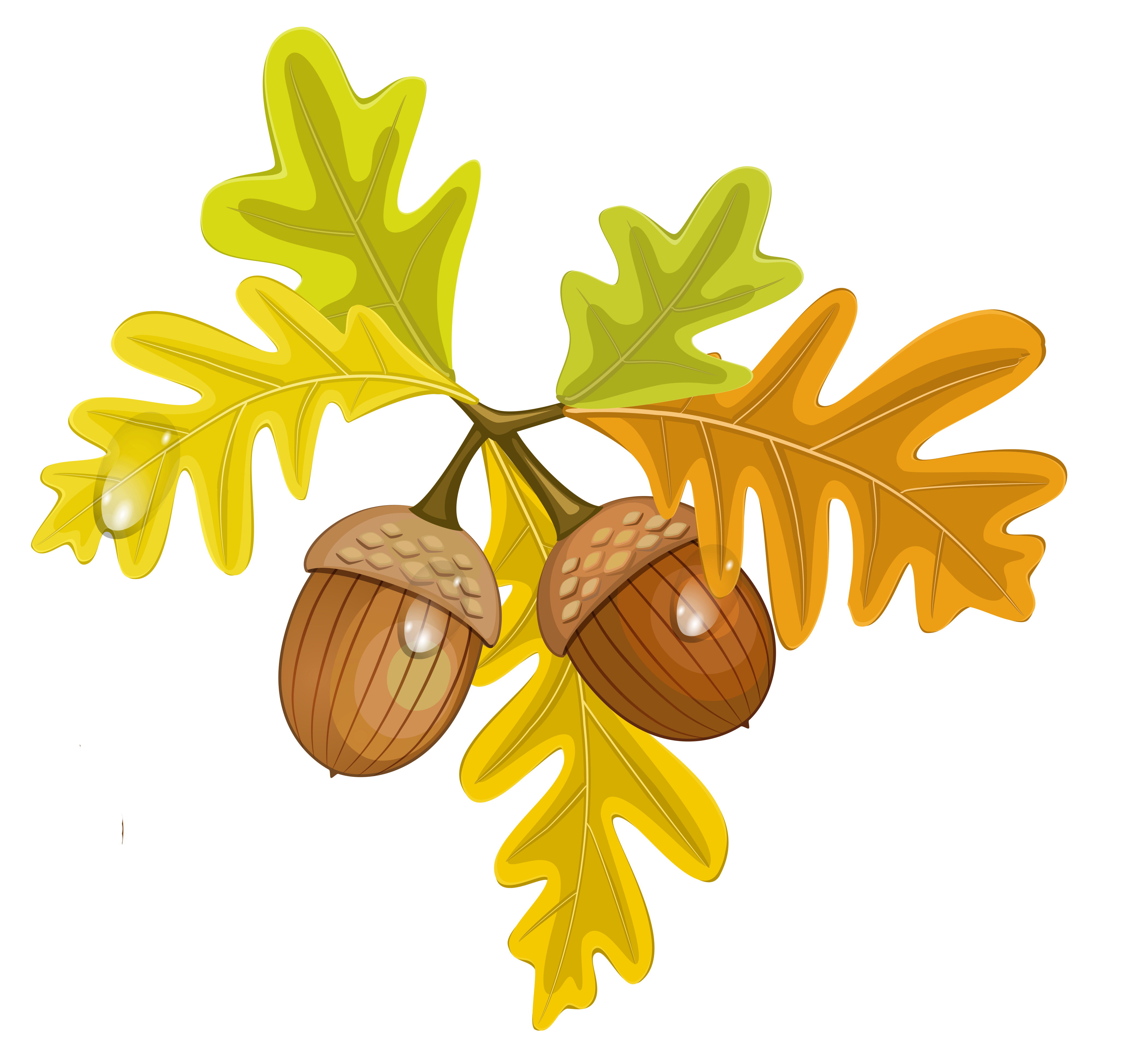 Leaves and Acorns Clip Art.