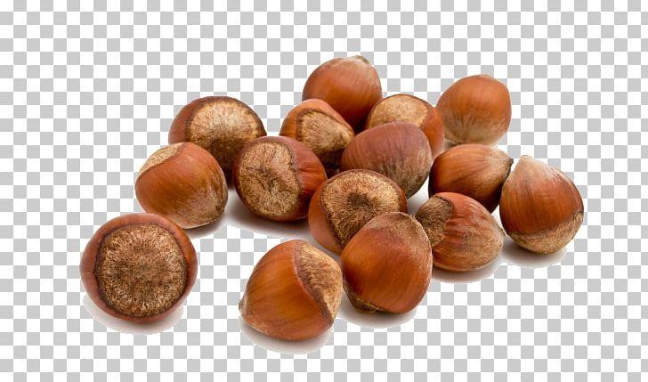 Hazelnut Food Almond PNG, Clipart, Acorn And Flowers, Acorn Border.