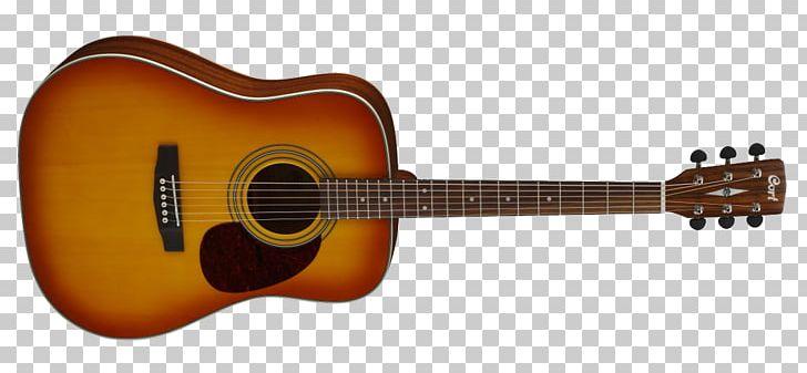 Acoustic Guitar Seagull Acoustic.