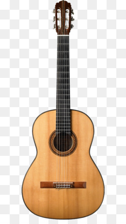 Taylor Guitars PNG and Taylor Guitars Transparent Clipart.