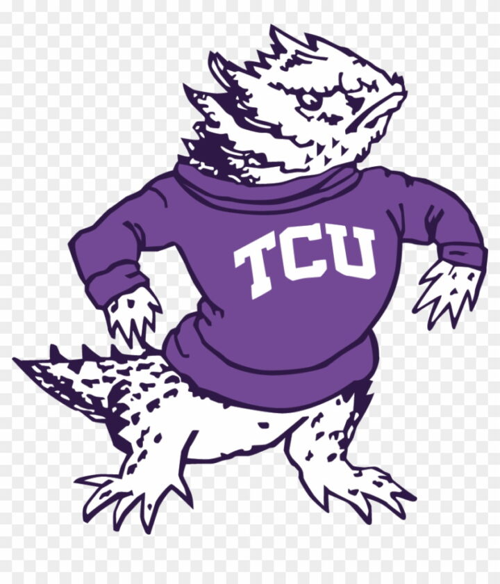 Vintage Tcu Horned Frogs Tcu Horned Frogs Image Provided.