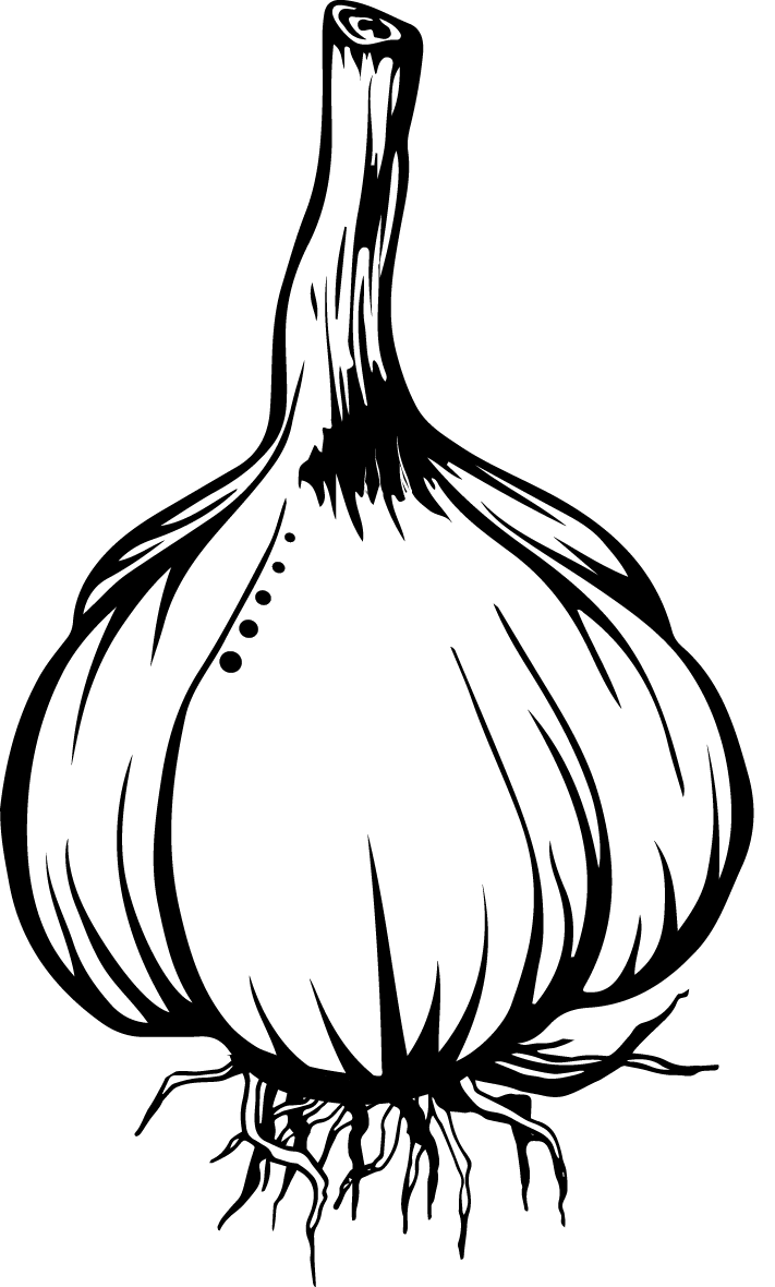 Garlic clipart acrid, Garlic acrid Transparent FREE for.