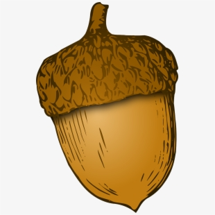 Nut Clipart Autumn Acorn.