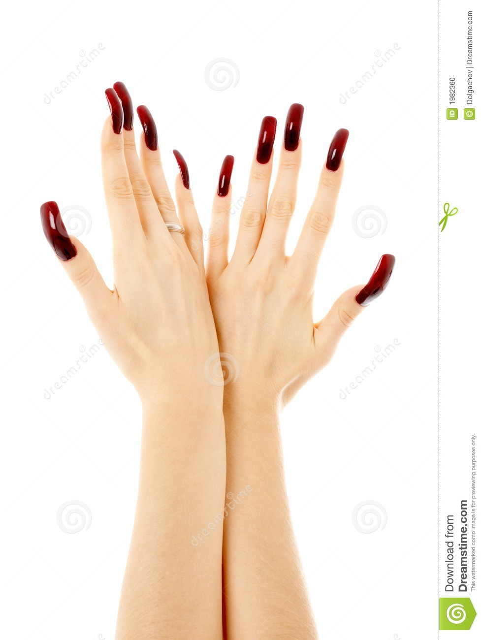 Two Hands With Long Acrylic Nails Stock Photo.
