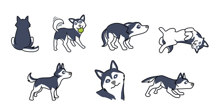Understanding Husky Body Language.