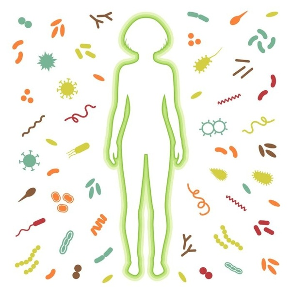 Can you develop a very strong immune system?.