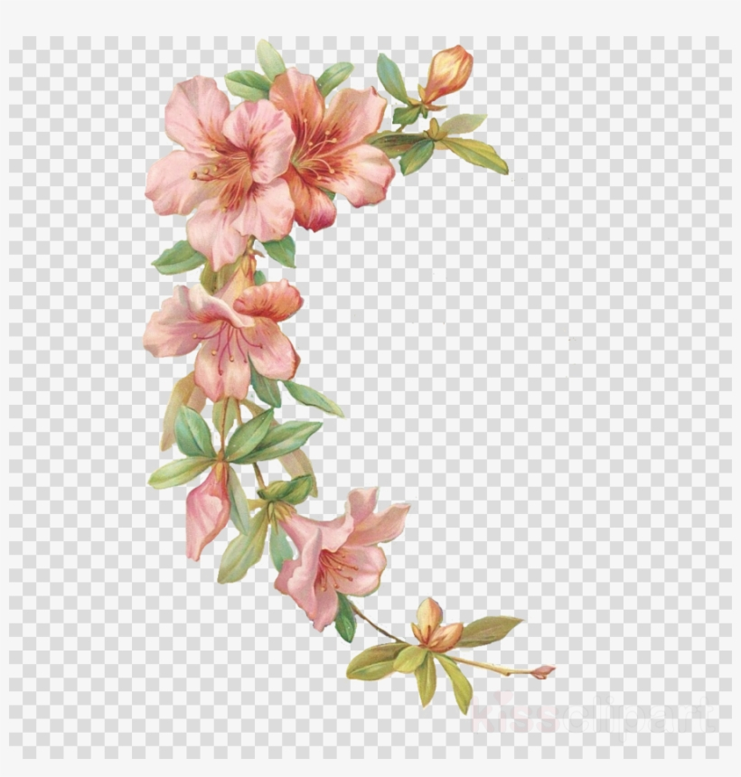 Flores Acuarela Png Con Marco Clipart Watercolor Painting.