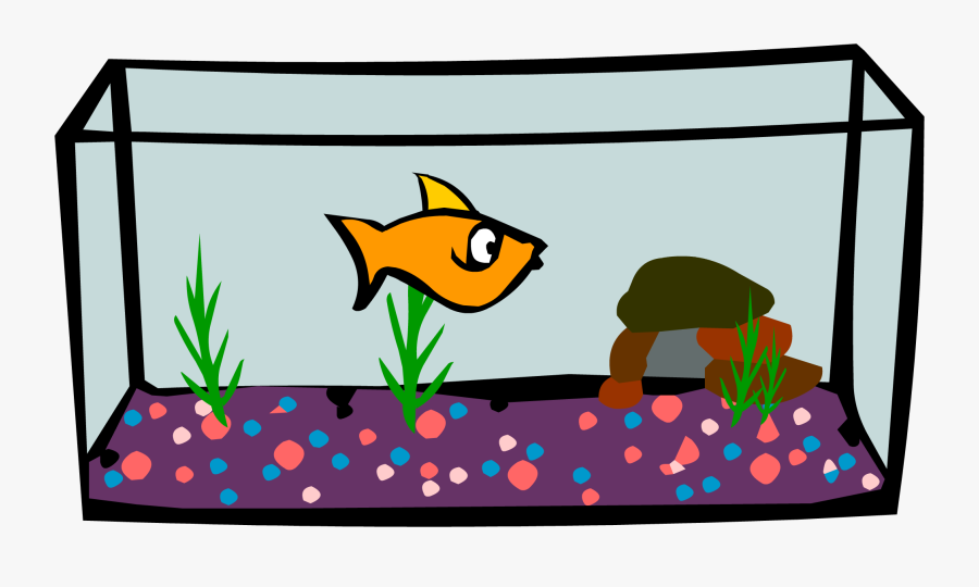 Fish Tank Free Download.