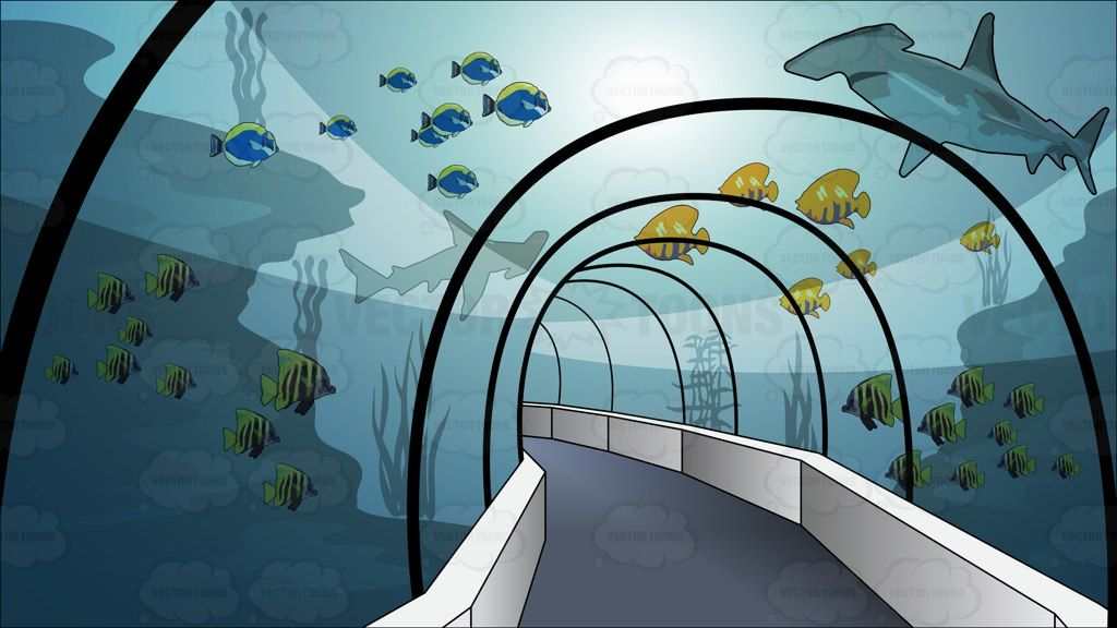 Aquarium clipart aquarium background, Aquarium aquarium.