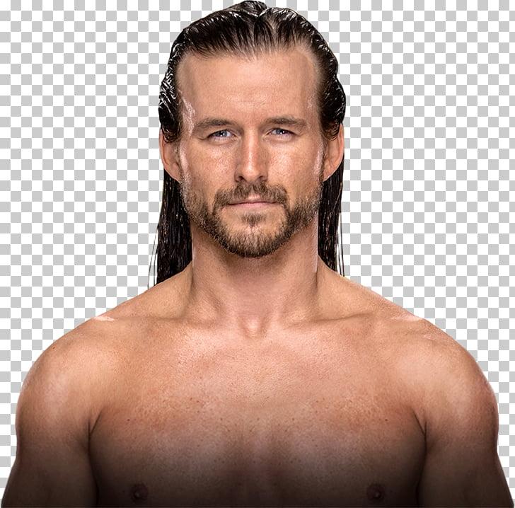 Adam Cole NXT TakeOver: Brooklyn III ROH World Tag Team.
