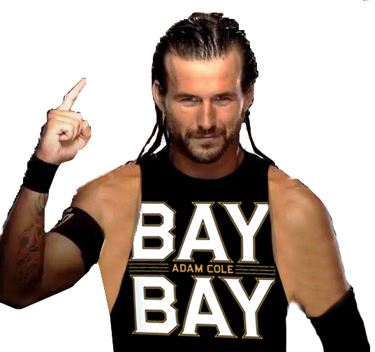 Download Free png WWE Adam Cole NXT Takeover War Games.