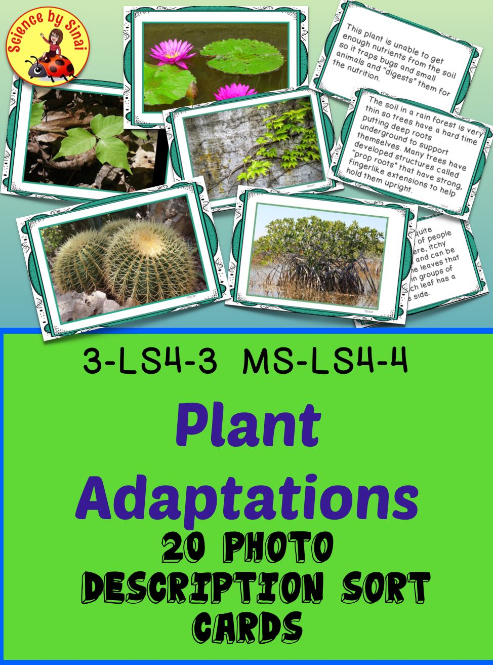 Need some good examples of amazing plant adaptations to.