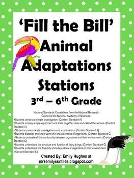 Fill the Bill Animal Adaptation Stations.