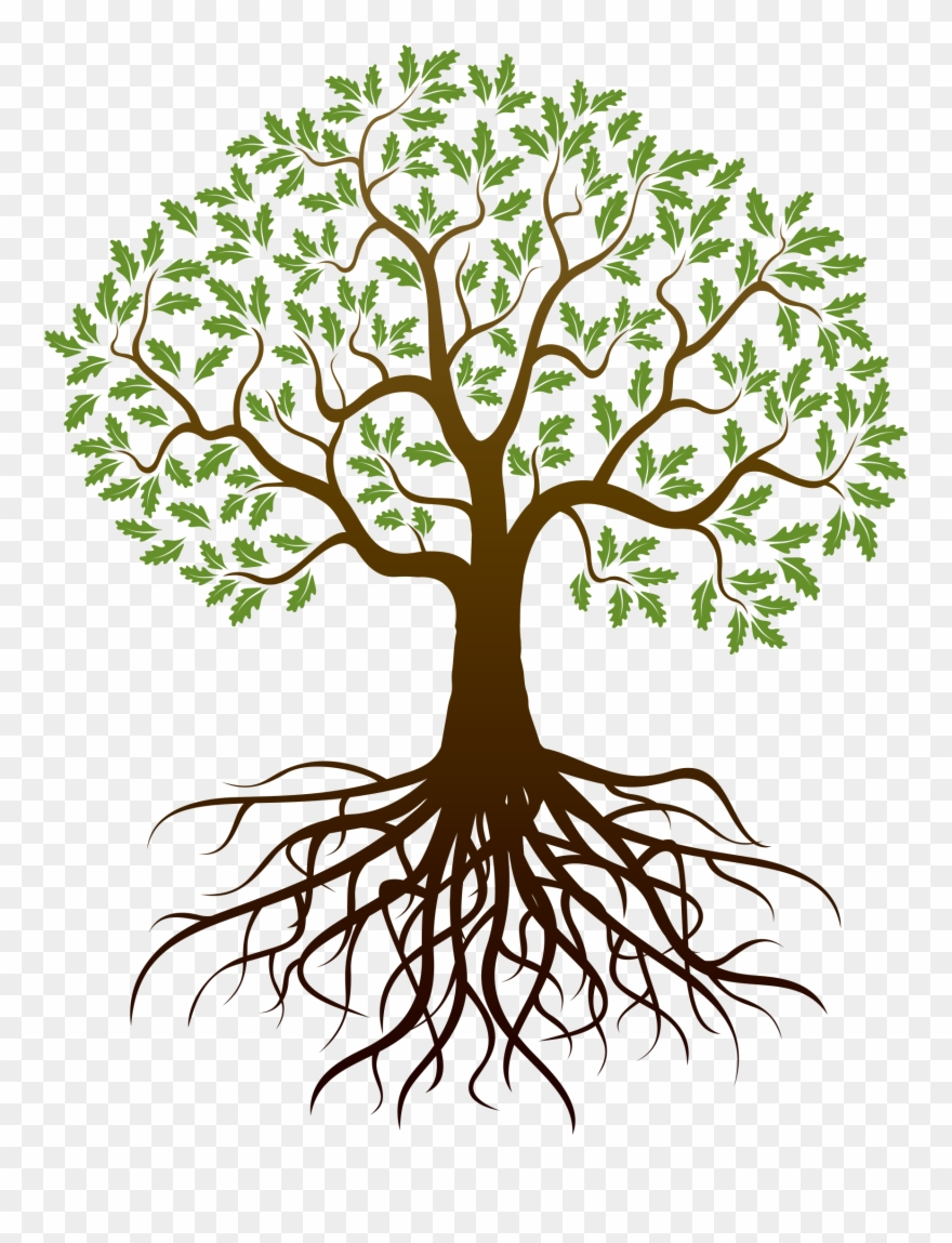 Clipart trees with roots clipart images gallery for free.
