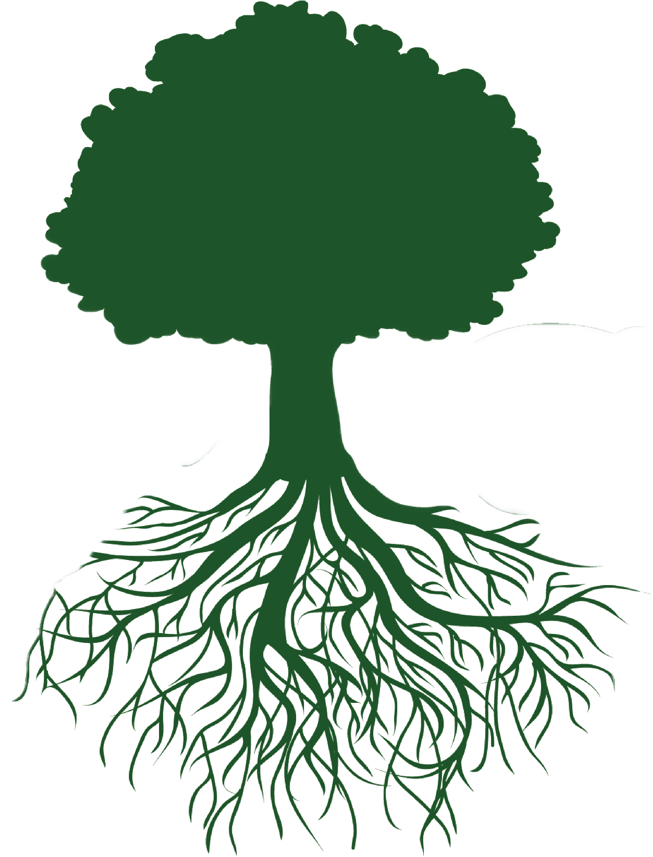 Roots illustration clipart images gallery for free download.