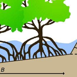 PDF) Effective adaptation to rising flood risk.