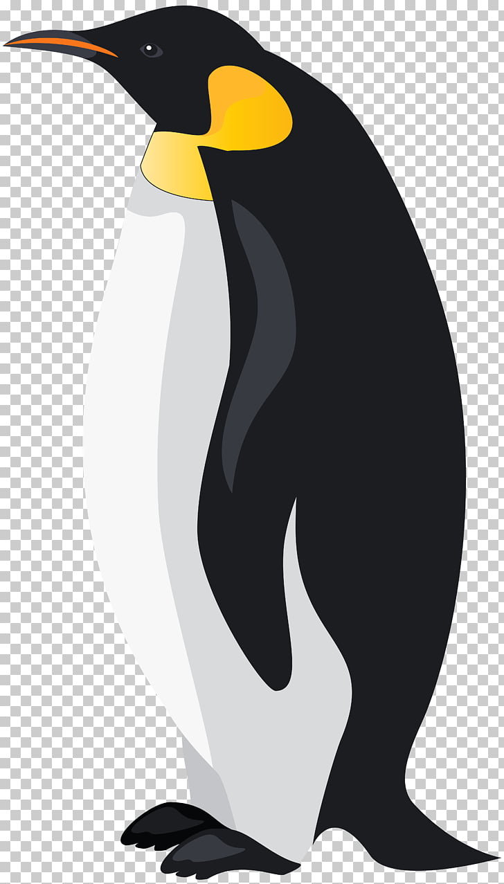 227 emperor Penguin PNG cliparts for free download.
