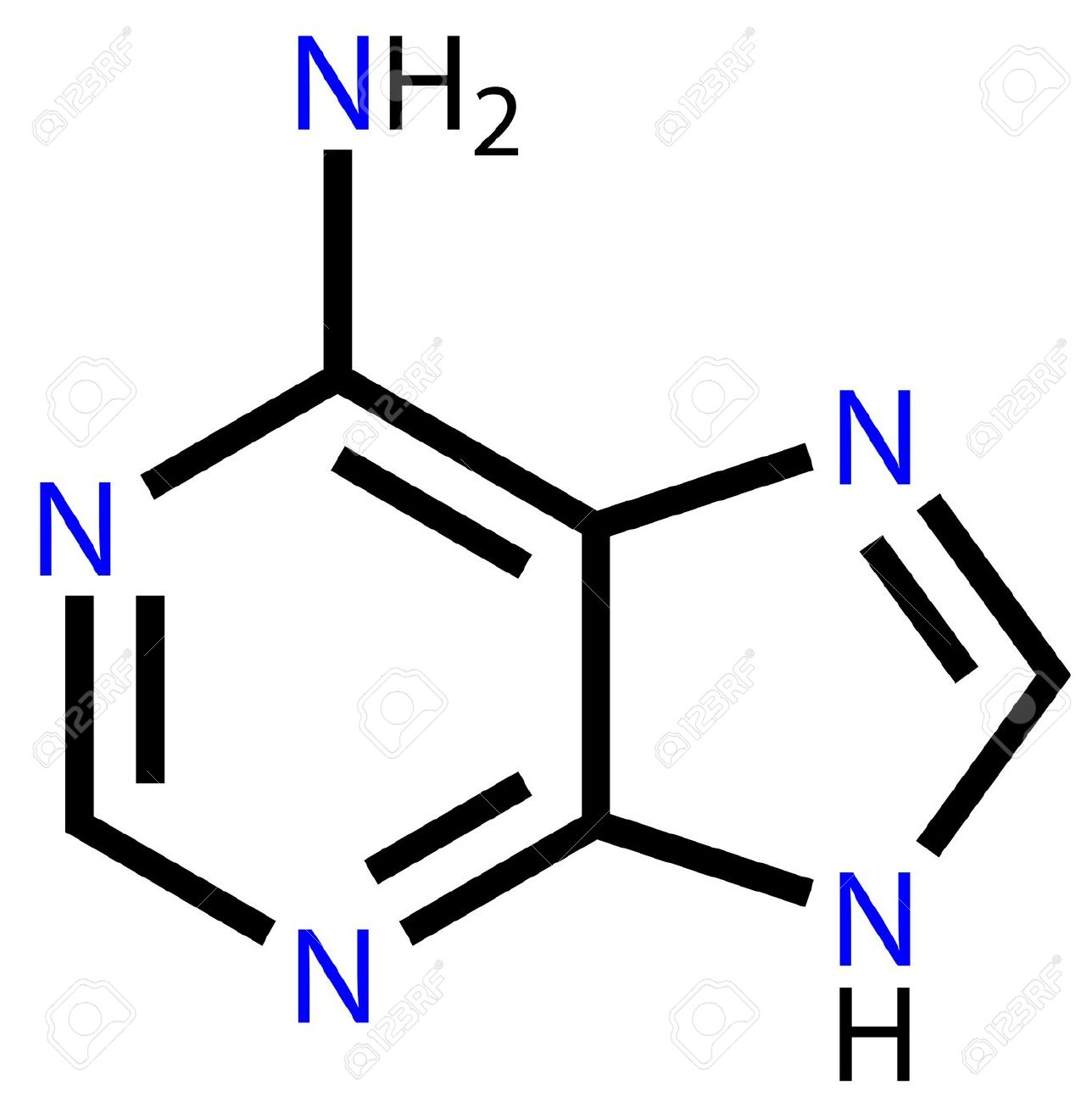 Nucleobase Adenine Structural Formula Royalty Free Cliparts.