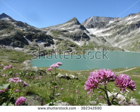 Weissee Stock Photos, Royalty.