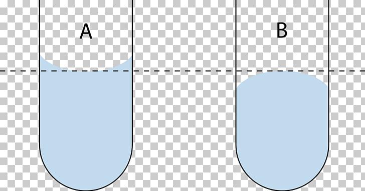 Meniscus Liquid Cohesion Surface tension Adhesion, sap.