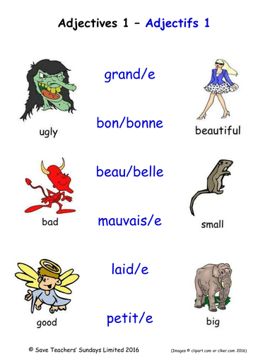 Adjectives in French Activities (36 pages covering 216 French adjectives).