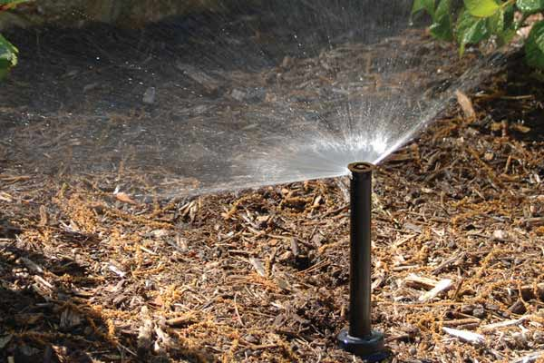 Popup Sprinklers and Nozzles.