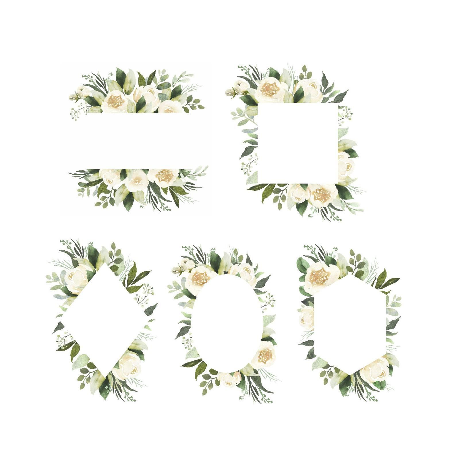 Adelaide watercolor clipart with white roses and eucalyptus.