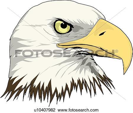 Clipart of Eagle Head u10407982.