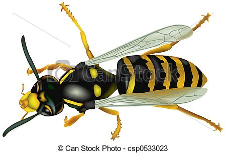 Wasp Stock Illustrations. 2,527 Wasp clip art images and royalty.