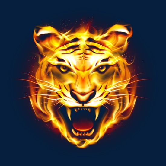 Hd Tiger Picture Fierce Flames, Tiger Clipart, Ferocious.
