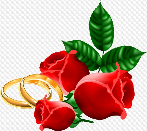 Wedding Clipart with transparent background ( psd, png.