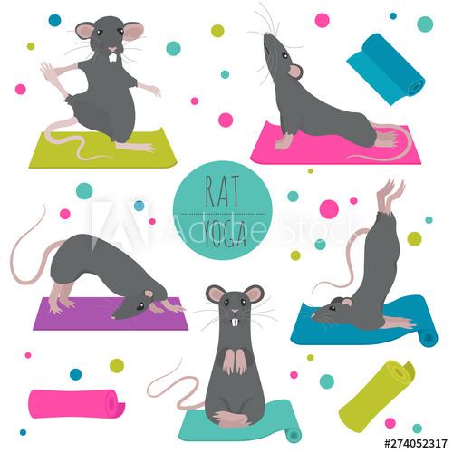 Rat yoga poses and exercises. Cute cartoon clipart set.