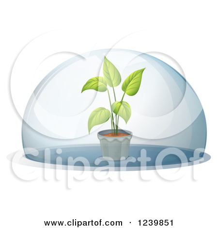 Clipart of a Potted Plant Under a Dome.
