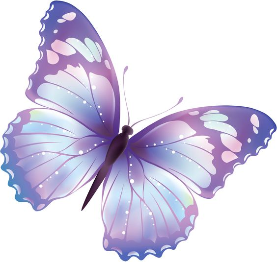Large Transparent Butterfly PNG Clipart.
