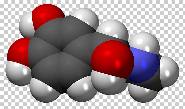 Adrenaline Hormone Chemistry Norepinephrine Neurotransmitter.