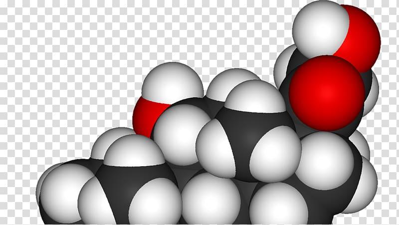 Cortisol Hormone Adrenal gland Disease Adrenal cortex.