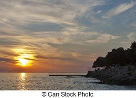 Stock Images of Vineyard in Croatia at the Adriatic coast.