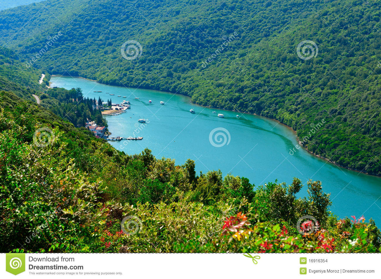 Lim Fjord Or Limski Canal. Adriatic Coast Stock Images.