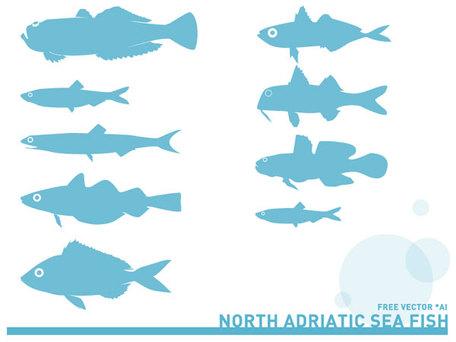 Adriatic Sea Fish Silhouettes Free, free vectors.