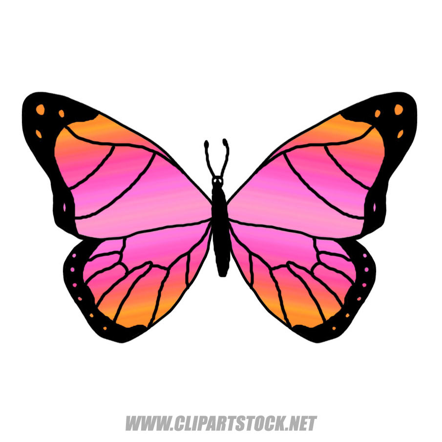 Monarch Butterfly Clipart Moving Image.