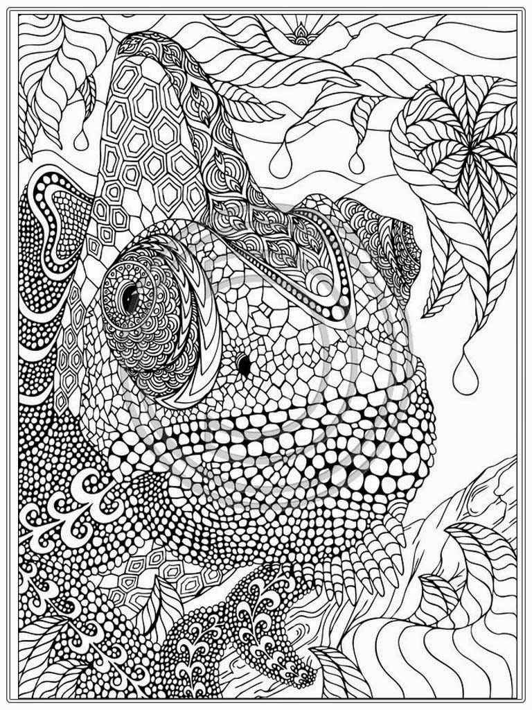 adult coloring pages on Clipart.