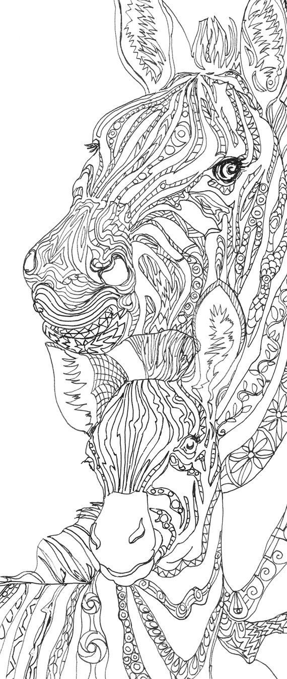 Zebra Clip Art Coloring pages Printable Adult Coloring book.