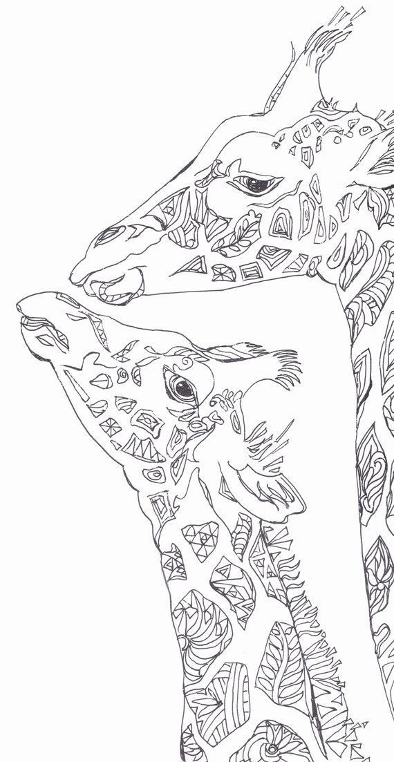 Coloring pages Printable Adult Coloring book Giraffe Clip.